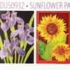 H Dupont Ready-outlined Greetings Card Set - Sunflower NEW