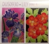 H Dupont Ready-outlined Greetings Card Set - Lily NEW