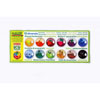 NEW OkoNORM Nawaro Natural Watercolour Palette with 12 colours